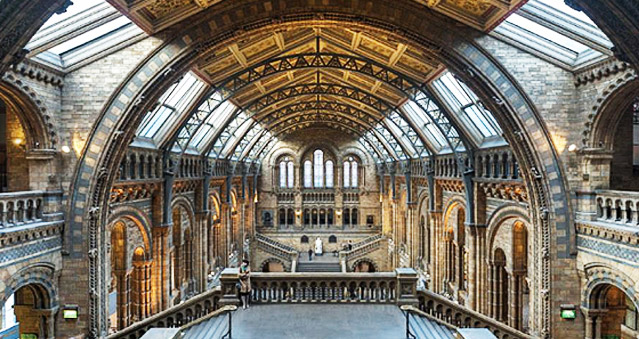 Natural History Museum - South London - Right Angle Corporate Events Venues